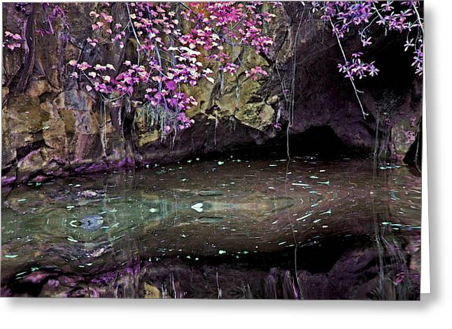 Mystical Landscape Greeting Cards - Mystical Pond Greeting Card by Linda Sannuti