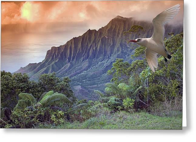 Dave Fleetham Greeting Cards - Na Pali Coast Greeting Card by Dave Fleetham - Printscapes