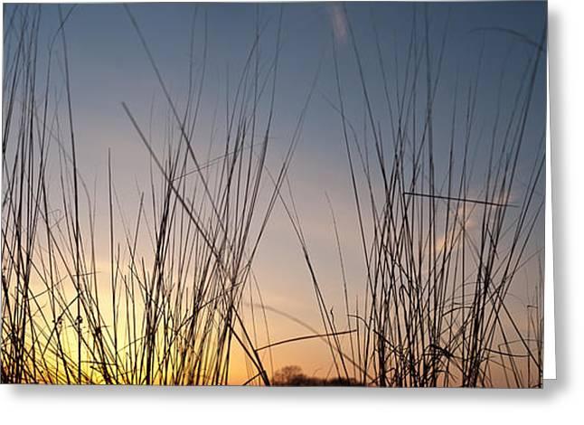 Nachusa Grasslands Sunset Greeting Card by Steve Gadomski