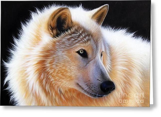 Wolf Song Studio Greeting Cards - Nala Greeting Card by Sandi Baker