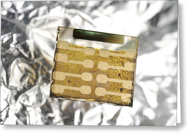 Single-celled Greeting Cards - Nanowire Solar Cell Greeting Card by Volker Steger