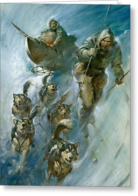 Huskies Greeting Cards - Nansen Conqueror of the Arctic Ice Greeting Card by James Edwin McConnell