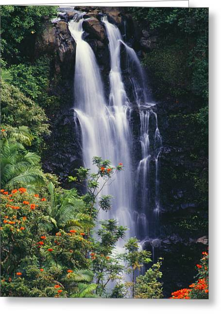 Hamakua Greeting Cards - Nanue Falls Greeting Card by Ray Mains - Printscapes