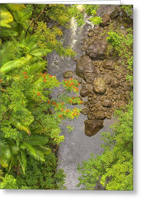 Hamakua Greeting Cards - Nanue streams Greeting Card by Ron Dahlquist - Printscapes