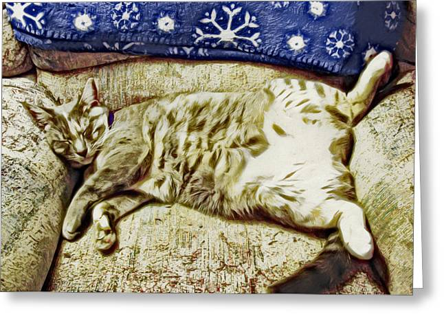 Grettings Greeting Cards - Nap Position Number 16 Greeting Card by David G Paul