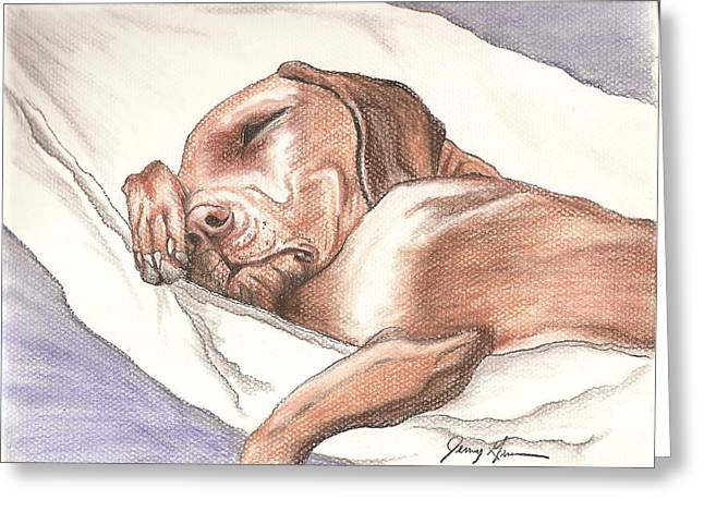 Chocolate Lab Pastels Greeting Cards - Nap Time Greeting Card by Jenny Greiner