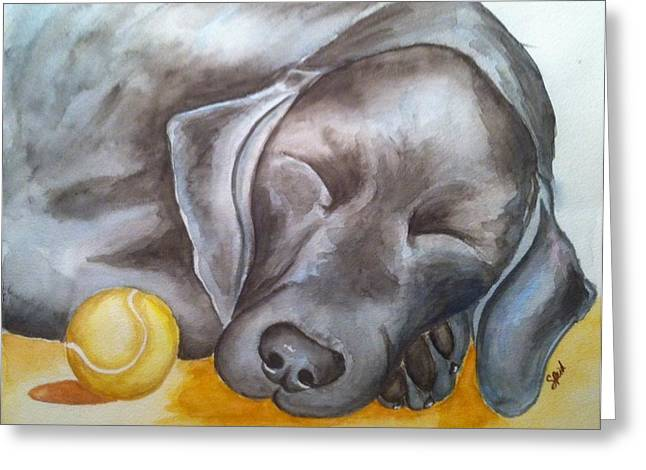 Dog With Tennis Ball Greeting Cards - Nap Time Greeting Card by Stephanie Reid