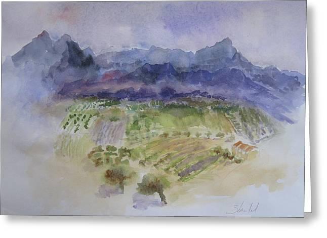 Napa Valley Ll Greeting Card by Carolyn Zbavitel