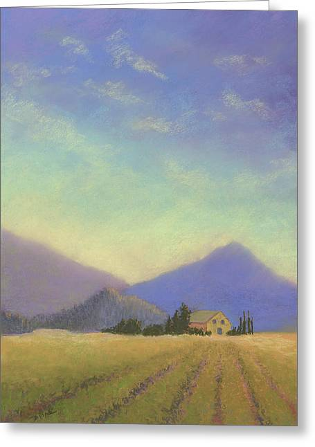 Vineyard Landscape Pastels Greeting Cards - Napa Valley Morning Greeting Card by Janet Biondi