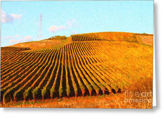 Pastoral Vineyards Greeting Cards - Napa Valley Vineyard Greeting Card by Wingsdomain Art and Photography