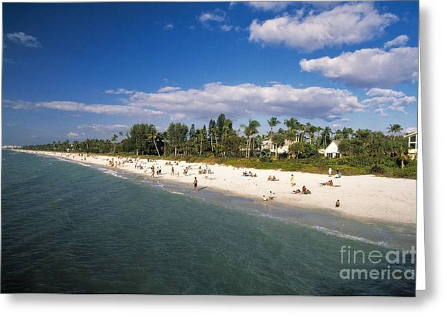 Mixed Age Range Greeting Cards - Naples Florida Greeting Card by Juan  Silva