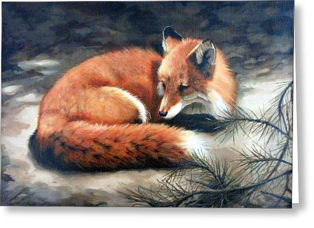 Sandra Chase Paintings Greeting Cards - Naptime in the Pine Barrens Greeting Card by Sandra Chase
