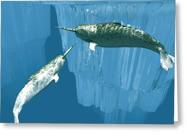 Narwhal Greeting Cards - Narwhals Greeting Card by Christian Darkin