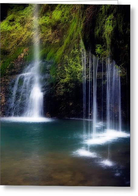 Natural Pool Greeting Cards - Natural Falls Greeting Card by Lana Trussell