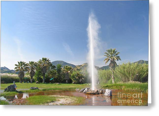 Calistoga Greeting Cards - Natural Geyser Greeting Card by Jaak Nilson