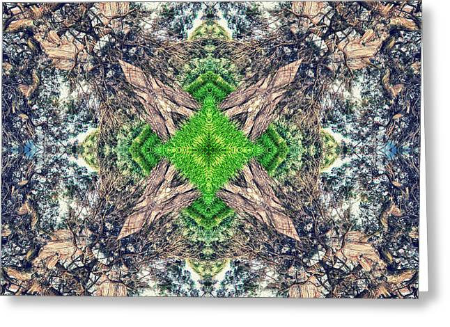 Abstract Style Greeting Cards - Nature Mandala Greeting Card by Stylianos Kleanthous