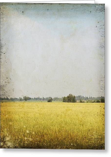 Border Photographs Greeting Cards - Nature Painting On Old Grunge Paper Greeting Card by Setsiri Silapasuwanchai