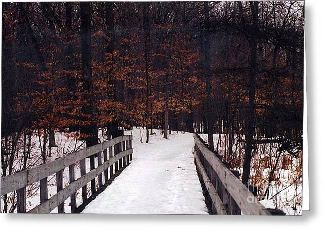 Fall Trees Greeting Cards - Nature Path In The Woods - Michigan Fall Nature Landscape Greeting Card by Kathy Fornal