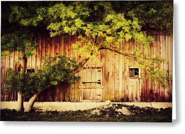 Barn Digital Art Greeting Cards - Natures Awning Greeting Card by Julie Hamilton
