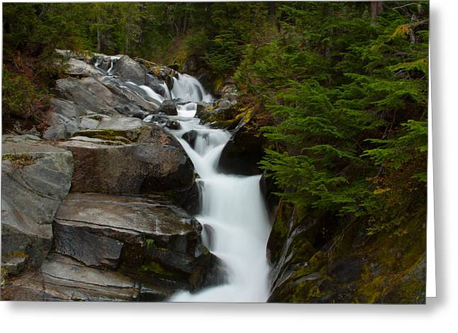 Vermont Photographs Greeting Cards - Natures Steps Greeting Card by Robert  Torkomian