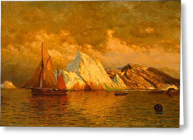 Port Town Greeting Cards - Near Midnight Labrador Greeting Card by William Bradford