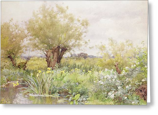 Near Greeting Cards - Near Shiplake Greeting Card by Alfred Parsons