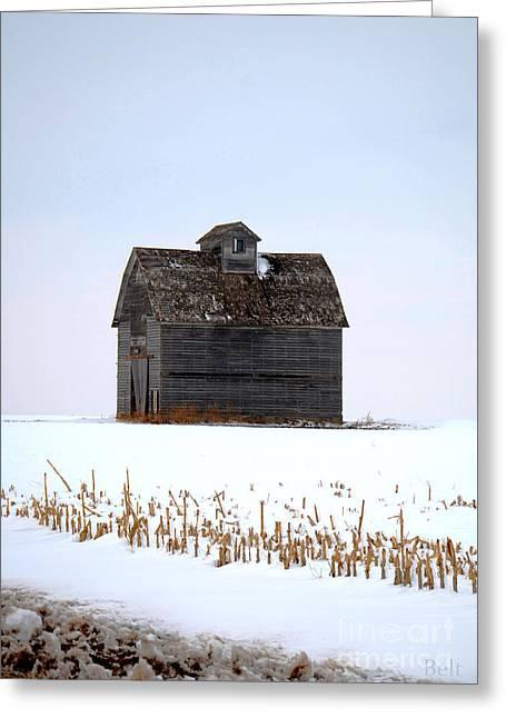 Rural Snow Scenes Greeting Cards - Nebraska Barn in Winter Greeting Card by Christine Belt
