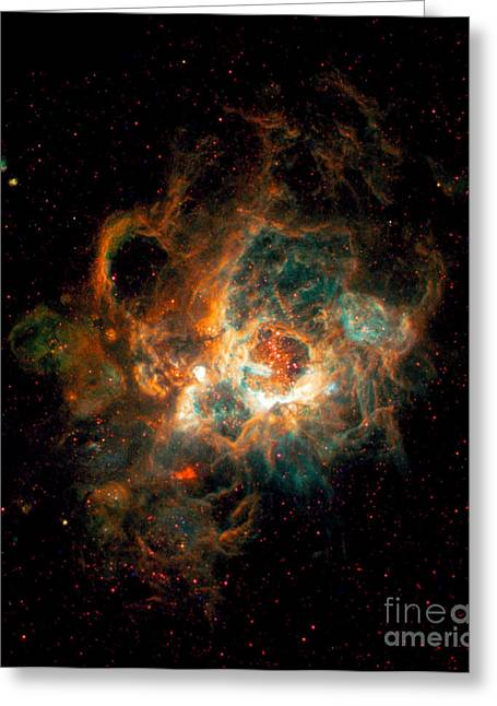 Hst Greeting Cards - Nebula In Galaxy M33 Greeting Card by Space Telescope Science Institute  NASA