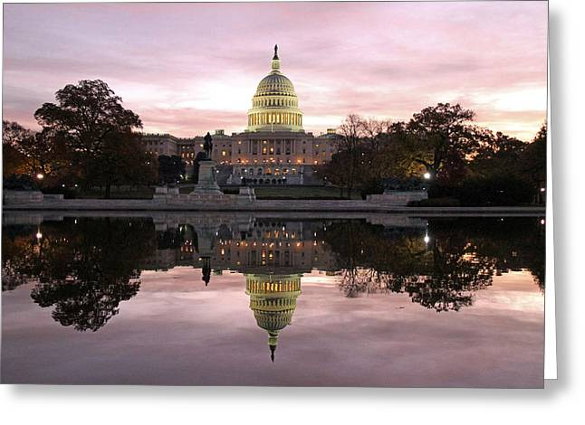 Capitol Greeting Cards - Necessity of Reflection Greeting Card by Mitch Cat