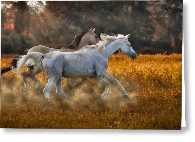 Quarter Horse Greeting Cards - Neck And Neck Greeting Card by Susan Candelario