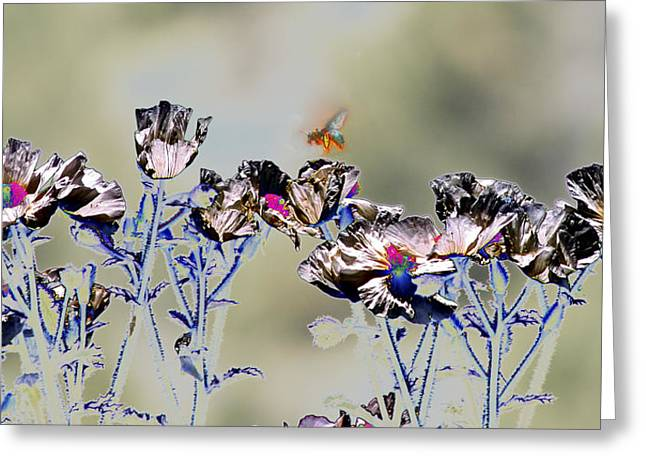 Subtle Colors Greeting Cards - Nectar Quest Greeting Card by Nabila Khanam