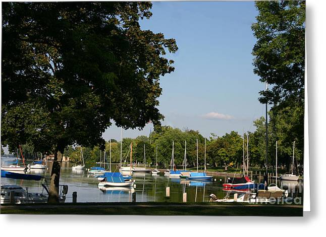 Recently Sold -  - Underwater Photos Greeting Cards - Neenah Harbor Greeting Card by Jack G  Brauer