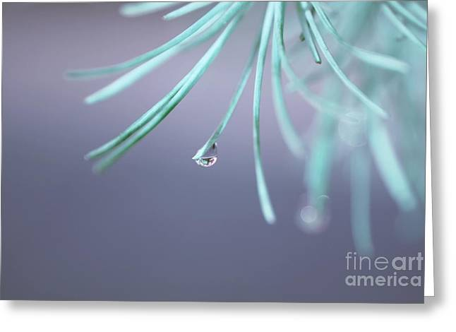 Graceful Tree Greeting Cards - Neigerelle - 01a Greeting Card by Variance Collections