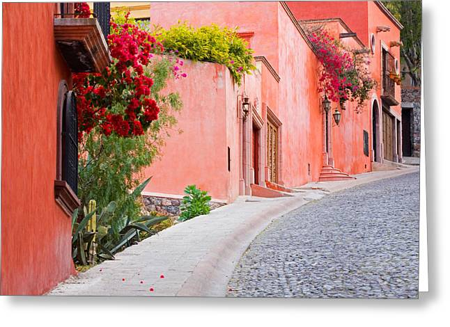 San Miguel De Allende Greeting Cards - Neighborhood Walk Greeting Card by Eggers   Photography