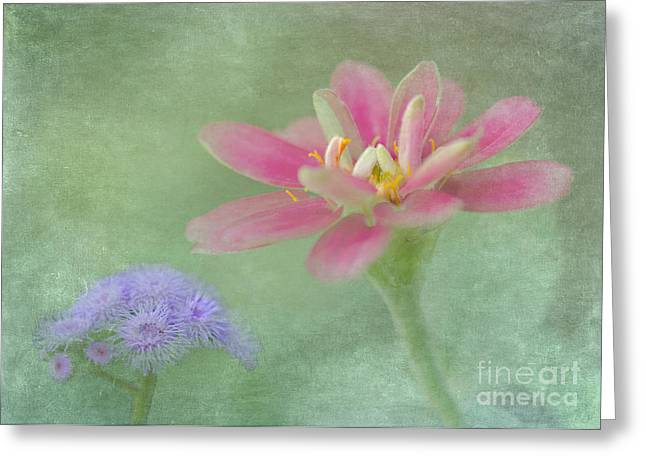 Floral Photographs Greeting Cards - Neighbors Greeting Card by Betty LaRue
