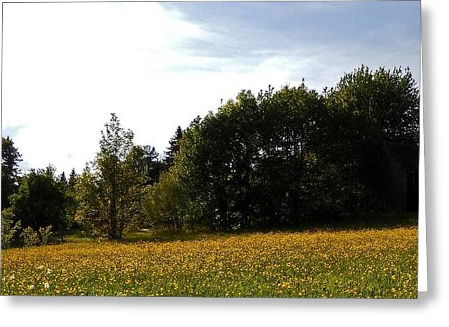 Wolken Greeting Cards - Neighbours Garden ... Greeting Card by Juergen Weiss