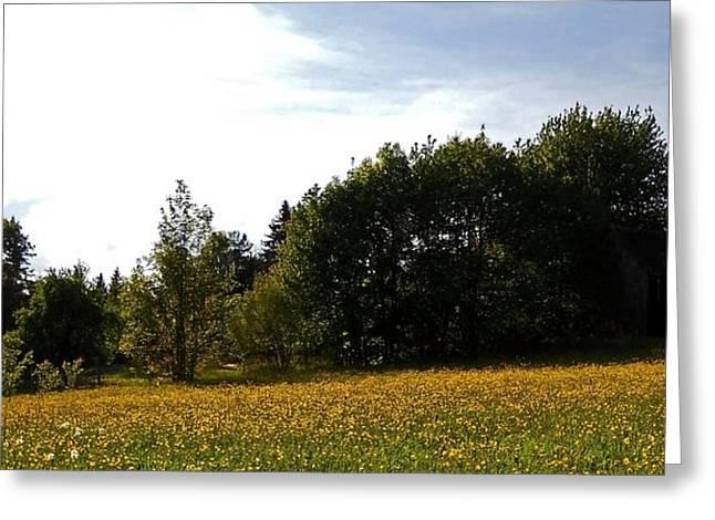 Neighbours Garden ... Greeting Card by Juergen Weiss