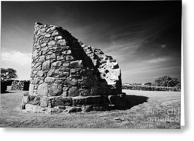 Historic Site Greeting Cards - Nendrum monastic site county down northern ireland Greeting Card by Joe Fox