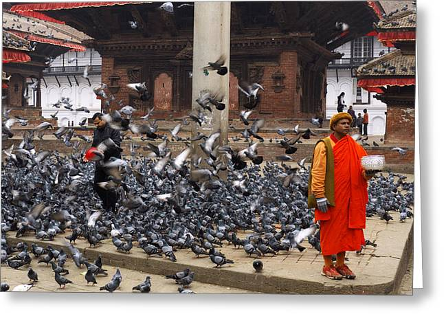 Bird Congregation Greeting Cards - Nepal Greeting Card by Ivan Slosar