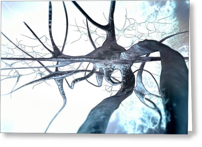 Interconnected Greeting Cards - Nerve Cells, Computer Artwork Greeting Card by Animate4.comscience Photo Libary