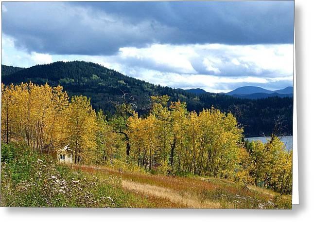 Mountain Cabin Greeting Cards - Nestled In The Autumn Trees Greeting Card by Will Borden