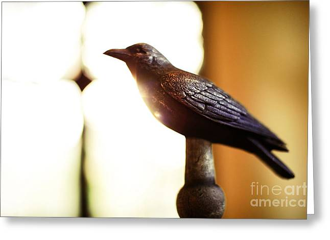 Lens Flare Greeting Cards - Nevermore Greeting Card by HD Connelly