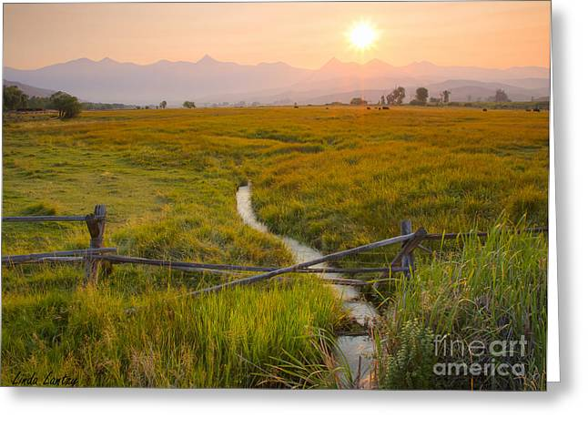 Salmon River Idaho Greeting Cards - New beginnings Greeting Card by Idaho Scenic Images Linda Lantzy