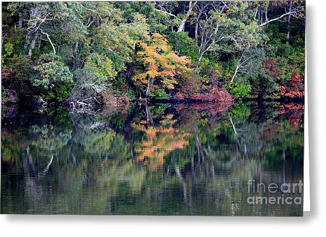 New England Fall Reflection Greeting Card by Carol Groenen