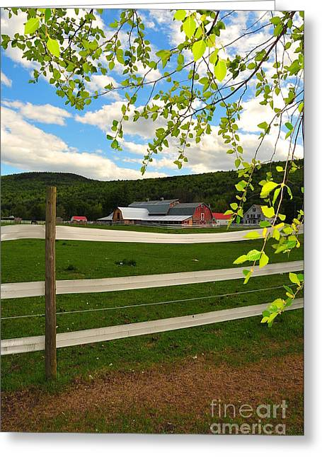Nature Phots Greeting Cards - New England Farm Greeting Card by Catherine Reusch  Daley