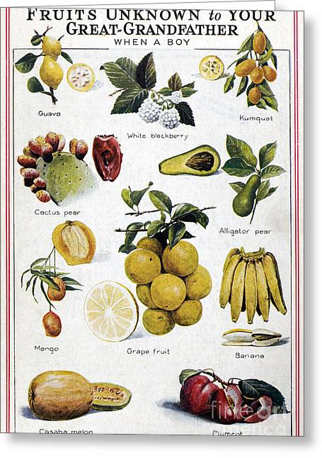 Melon Greeting Cards - NEW FRUITS, c1950s Greeting Card by Granger