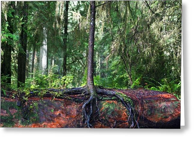 New Growth Greeting Card by Anthony Jones
