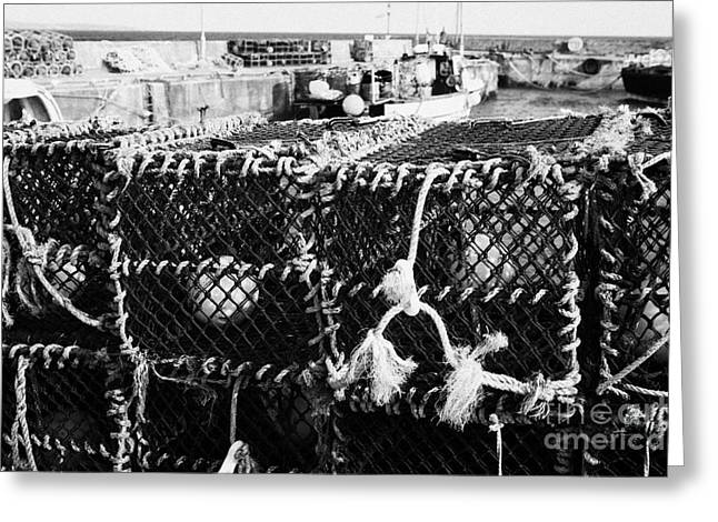 Lobster Pot Greeting Cards - new lobster pots piled up at John OGroats harbour scotland uk Greeting Card by Joe Fox