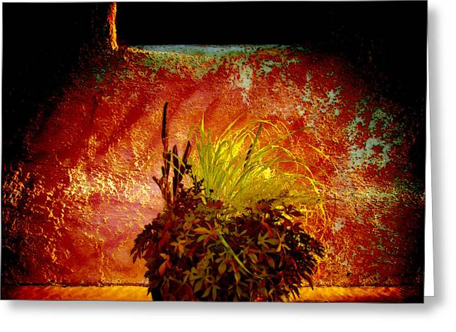 Manipulated Photography Greeting Cards - New Mexico Night Greeting Card by Ann Powell