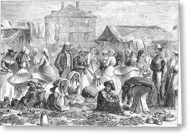 New Orleans: Market, 1866 Greeting Card by Granger